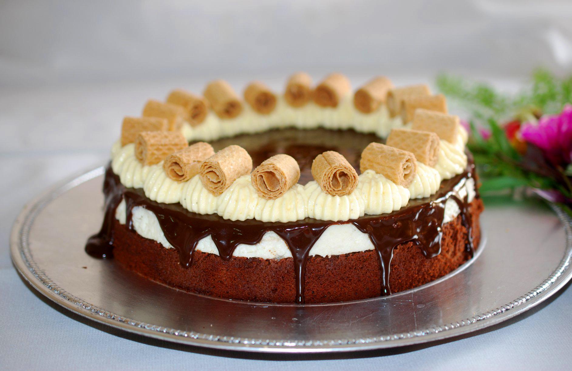 עוגת גבינה שוקולד | אלונה זהור | ויטרינה - כל מה שחדש